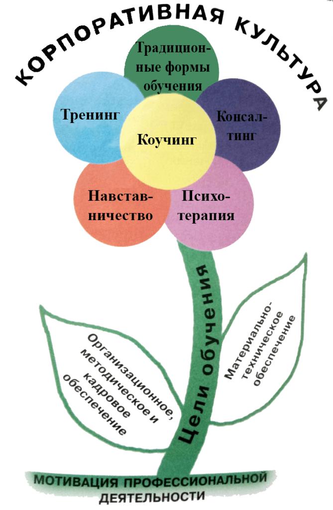 Рис.1 Цветок обучения и развития