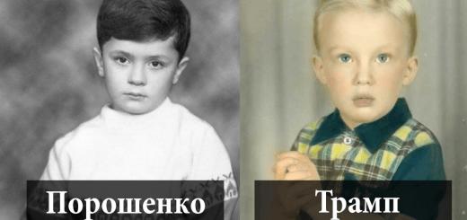 Почему Иванушка-дурачок – младший, или как теория порядка рождения проявляется в политике?